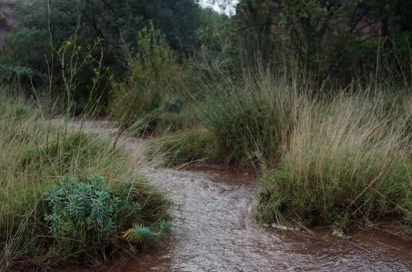 Starkregen in Südfrankreich 2019